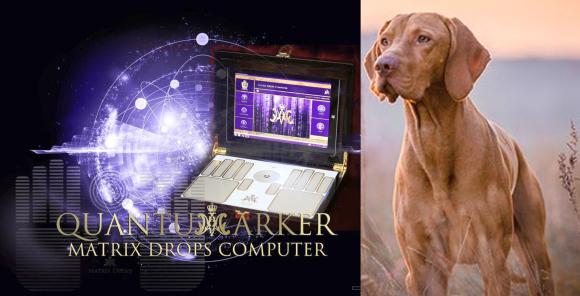 Matrix Drops Computer - Több, mint testőr