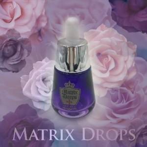 Matrix Drops rose