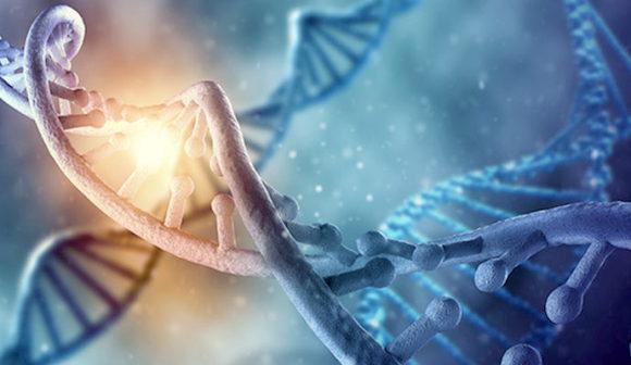 Meglepő módon az érzelmek a másik szobában levő DNS-t is befolyásolták