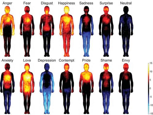 organism's spiritual, emotional, relational properties