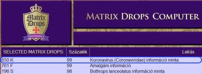 Matrix Drops Computer - a MD 650K Coronaviridae 99%-ban jelezte.